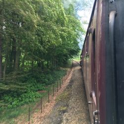 An action shot of the journey in the wooded hills at Sheringham