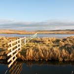 Salthouse-Marsh