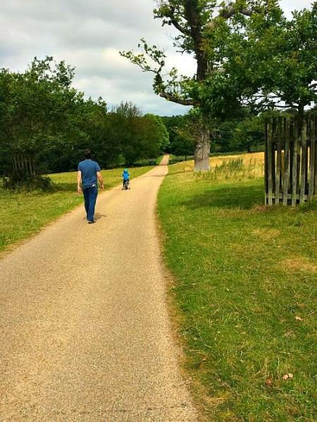 Walking through Felbrigg grounds