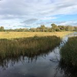 Sculthorpe Moor Nature Reserve